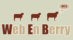Accueil de webenberry.com cr�ation de sites internet
